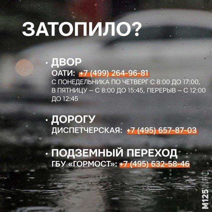 5226CA85-35E2-47D7-88A9-1BC1D14F368A.jpeg