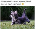 Фотография Светлана и Константин